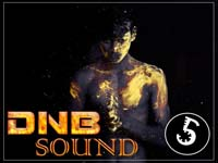 VA - DNB Sound vol.5 (2015) MP3