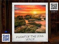 VA - Flight Of The Soul vol.31 (2015) MP3