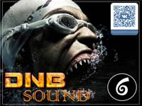 VA - DNB Sound vol.6 (2015) MP3