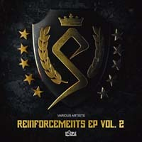 VA - Reinforcements, Vol. 2 (2015) MP3
